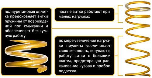 gold progressive shag vitkov
